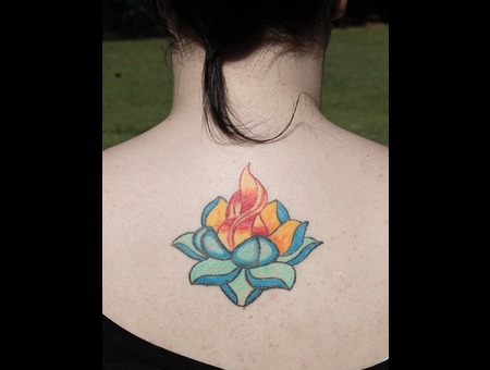 Lotus Flower  Fire Color