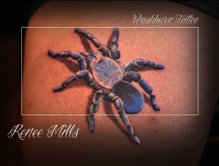 Spider  Blue  Color  Real  Realistic Detailed  Life Size Color