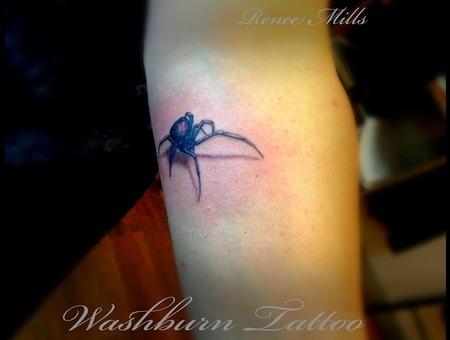 Micro  Black Widow  Spider  Color Color