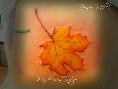 Maple Leaf  Full Color  Realistic  Realism  Leaf  Autumn Color