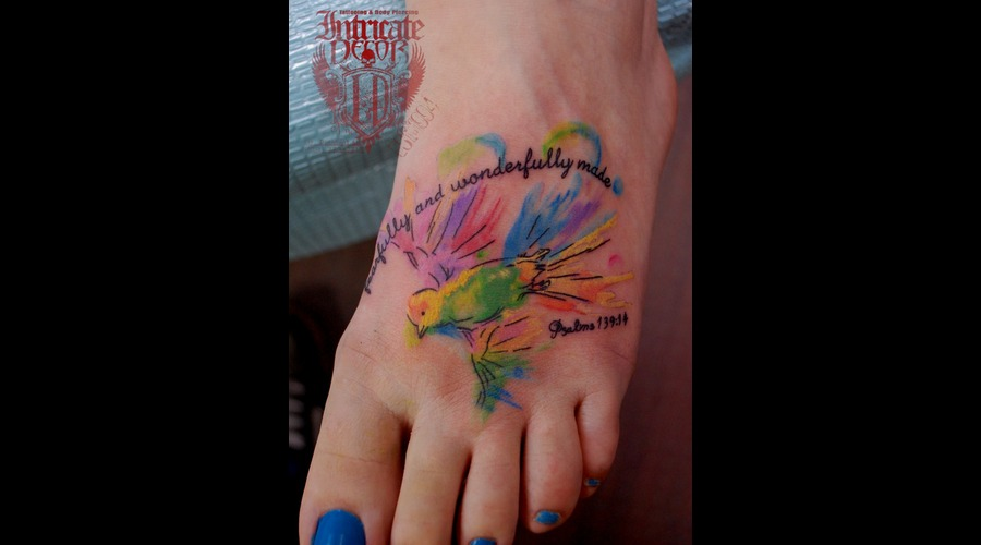 Bird Foot Watercolor Colorful Color Foot