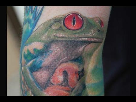 Frog  Treefrog Color