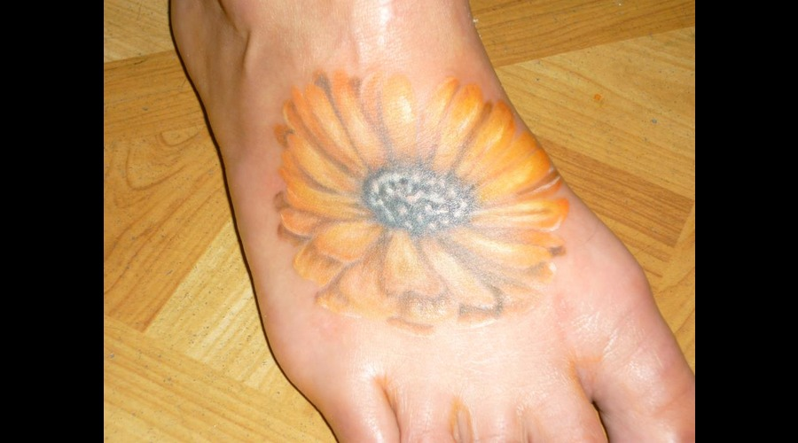 Daisy  Flowers Color Foot