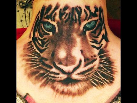 Tiger  Wild Life Black Grey Neck