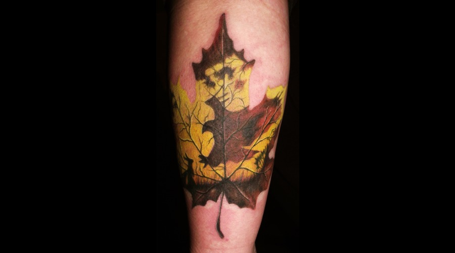 Nature  Wild Life Color Forearm