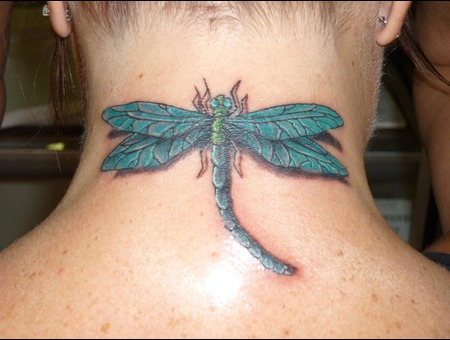 After  Rework  Cover Up Dragon Fly  Wild Life Color Neck