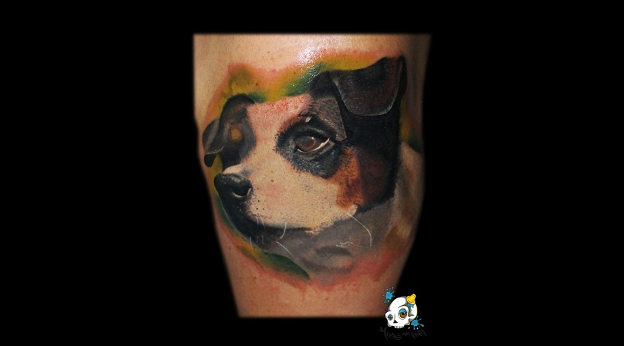 Dog  Puppy  Nature Color Arm