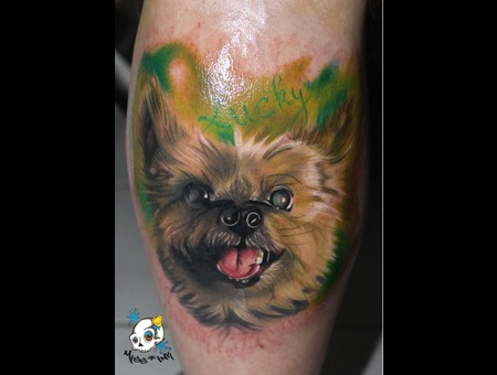 Dog  Puppy  Nature Color Lower Leg