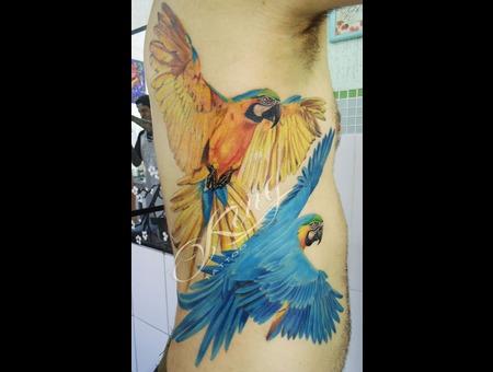 Realistic Tattoo  Realism  Araras Color