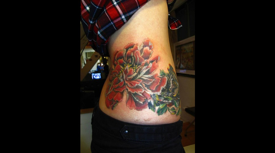 Tree Peony Flower Color Ribs