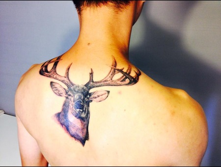 Deer Black Grey Back