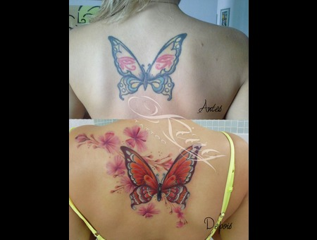 Extreme Makeover  Cover Up  Butterfly  Sakura Color Back