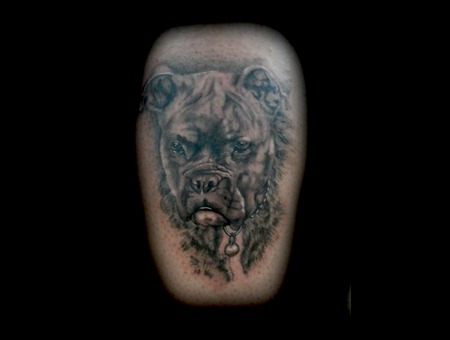 Animal  Dog  Portrait  Black  Grey  Realism. Black Grey Lower Leg
