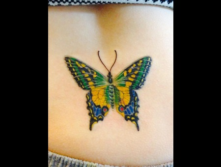 Butterfly Color Back