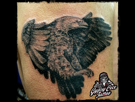 Realistic Eagle Black Grey Shoulder
