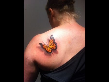 3d Butterfly Color Back