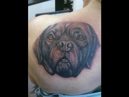 Dog  Portrait   Black Grey Shoulder