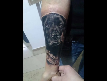 Portrait  Dog  Animal  Latin Lettering  Realistic Black Grey Arm