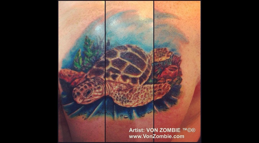 Cover Up  Realism  Sea  Turle  Animal  3d  Color Color Shoulder