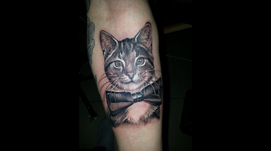 Realism Tattoo Animal Portait Tattoo Cat Tattoo Black Grey Arm