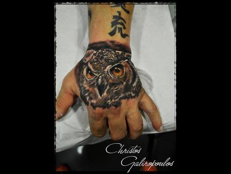 Owl Color Arm