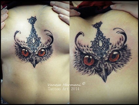 Owl  Realism  Free Hand  Half Healed Color Chest