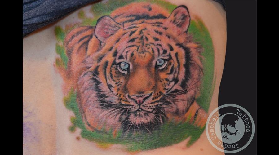 Tiger  Portrait  Realsim Color