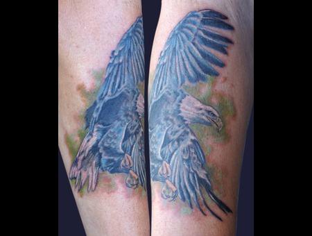 Eagle  Bird  Portrait  Realism