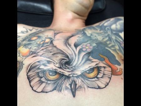 Owl Bird Eye Color Chest