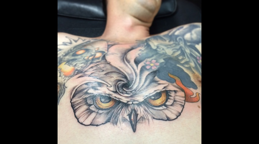 Owl Bird Eye Color Chest