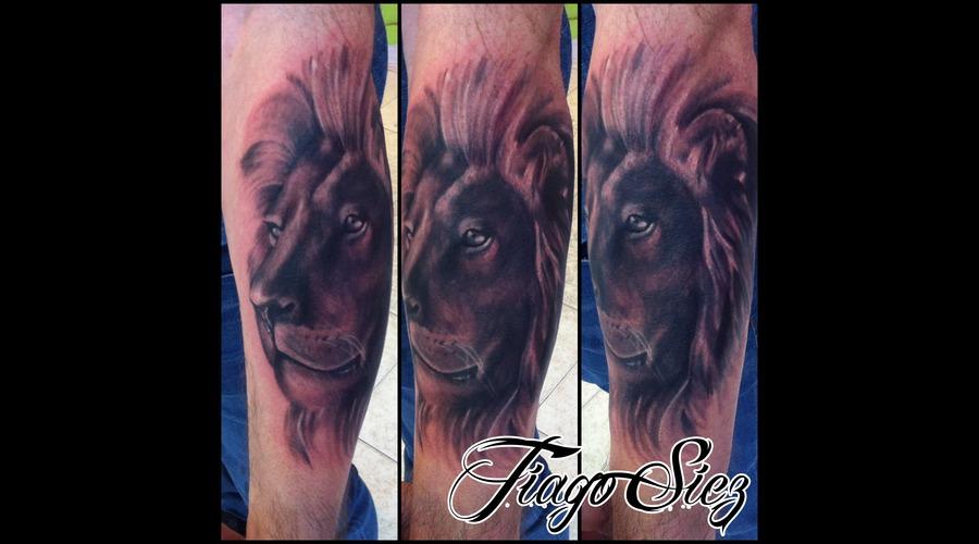 Tattoo  Lion  Black And Grey