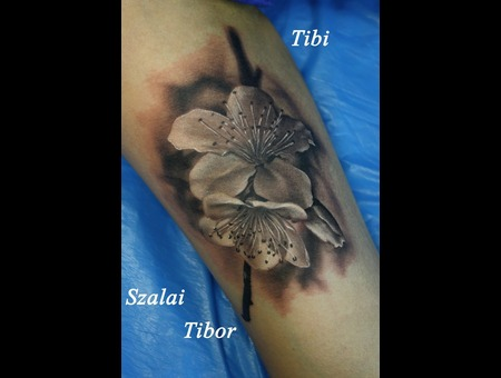 Black And Grey  Cherry Blossom  Realistic  Flowers Black Grey Arm