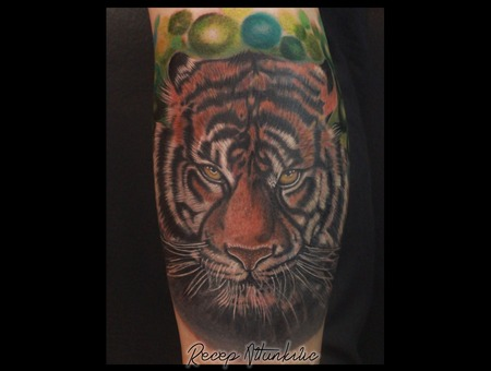 Tiger Color Lower Leg