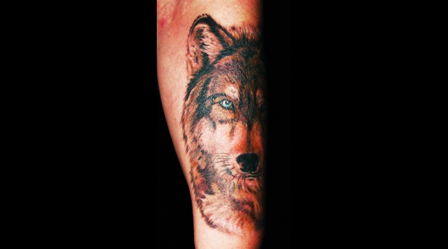 Wolf Color Forearm