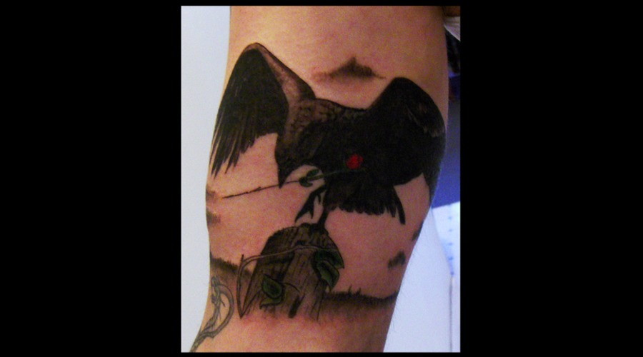 Raven Black Grey Arm