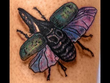 Bug Color Arm