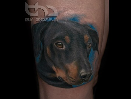 Dog  Portrait  Realistic  Color  Tattoo  Zoran Color Thigh