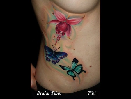 Color  Flower  Butterflies Color Ribs