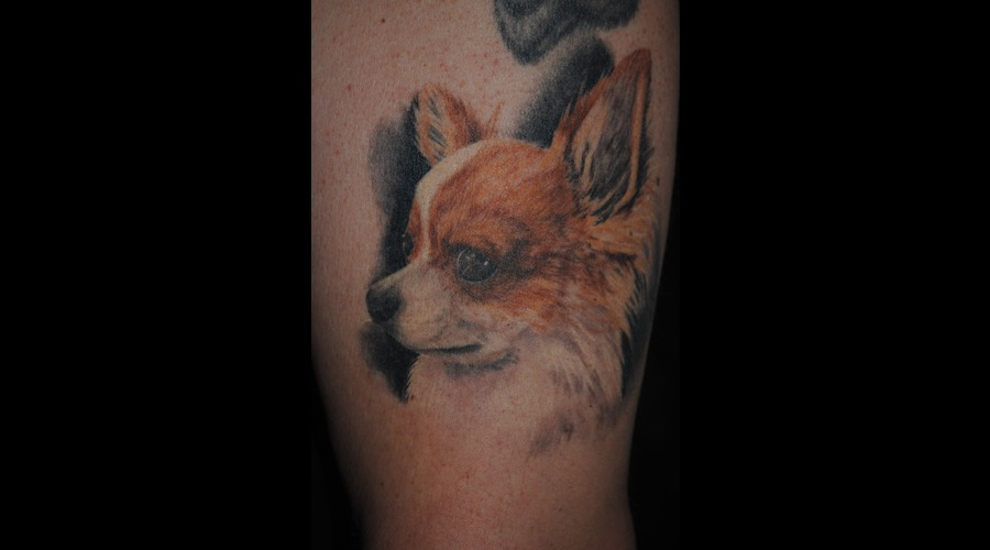 #Healed #Portrait Of A #Dog Color Arm