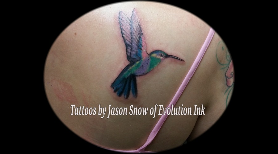 Humming Bird  Photo Realism Color Back