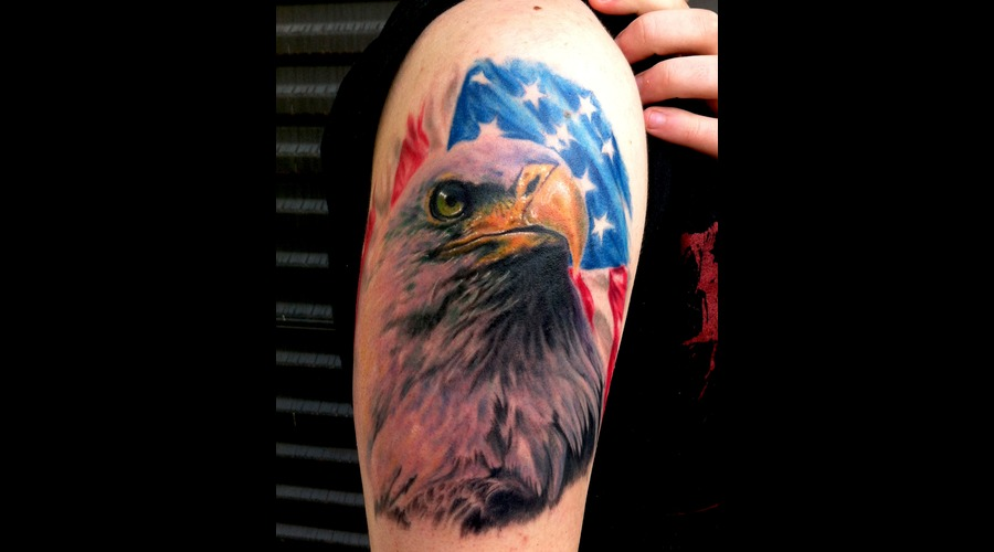 Eagle  Patriotic  American  Realistic  Realism  Wildlife  Animals Color Arm