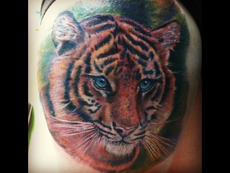 Animal  Wildlife  Tiger  Realism  Realistic  Cat Color Thigh