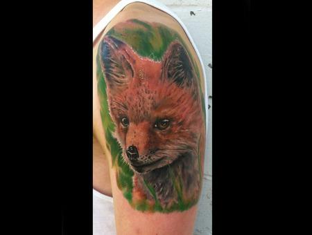 Fox  Animal  Animals  Pets  Color  Portrait Color Arm
