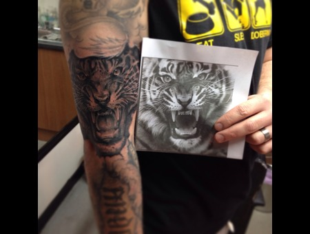 Tiger Black Grey Arm