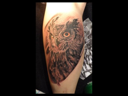 Owl  Eule  Black And Grey  Bird  Eyes  Realism Black Grey Lower Leg
