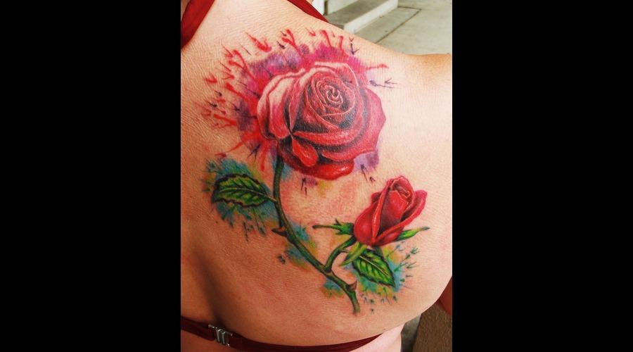 Rose  Flower  Watercolor   Color Shoulder