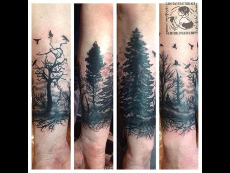 Wood  Forest  Tree  Birds  Scene Black Grey Forearm