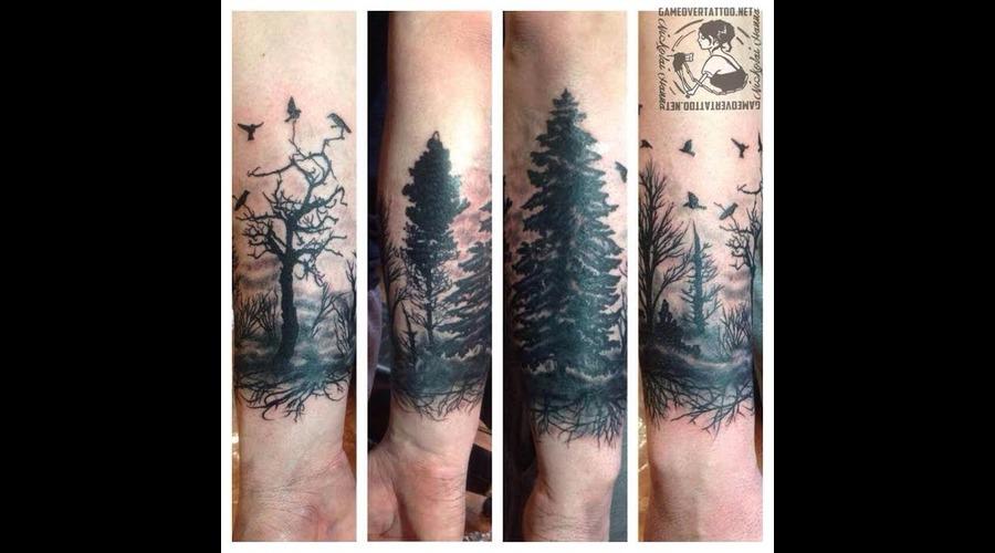 Wood  Forest  Tree  Birds  Scene Black Grey Forearm