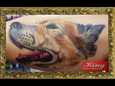 Dog Tattoo  Animal Portrait Tattoo Color