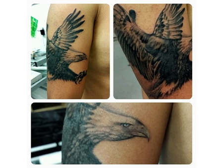 Bird Eagle Wings  Black Grey Arm